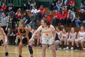 Ashlyn Perales Is A Good Basketball Player For The Marlette Red Raiders As Of Sophomore.